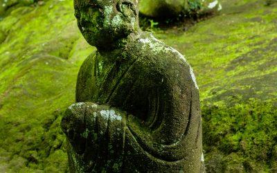 רפואה סינית הקשר לקול, ופתרון יעיל לצרידות – שכזה עוד לא ראיתי ולא פגשתי – בול פגיעה