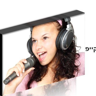 שיעורי קול פרטיים פנים מול פנים או און ליין בסקייפ